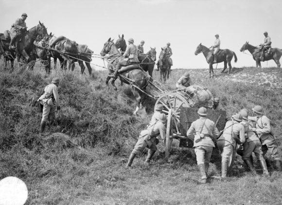[MONTIGNY] Exposition «Les animaux de la Grande Guerre»