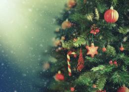 Les arbres de Noël dans les communes de Cloyes-les-Trois-Rivières